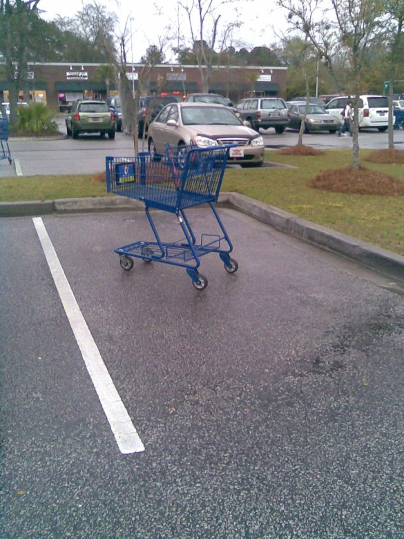 Proof of Shopping Cart Crimes!